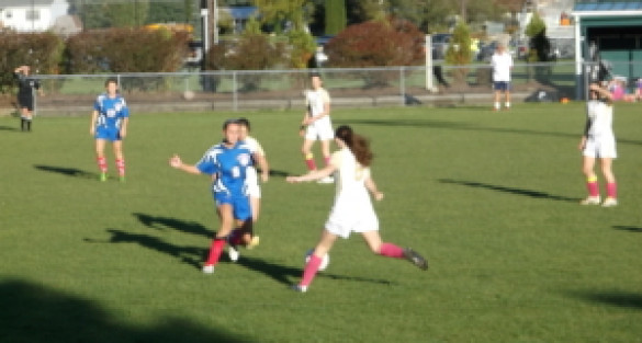 GIRLS SOCCER: Round One Of Sectionals Starts With A Bang