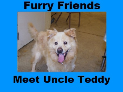 Furry Friends: Uncle Teddy