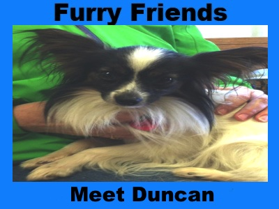 Furry Friends: Duncan