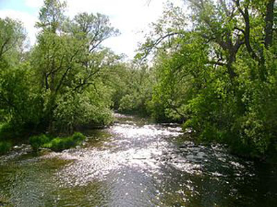 DEC states no environmental concerns for Oatka Creek