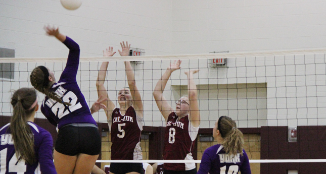 Cal-Mum Volleyball Falls to York in Five Sets