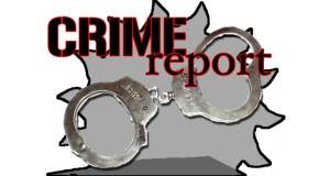 crime report mockup 1