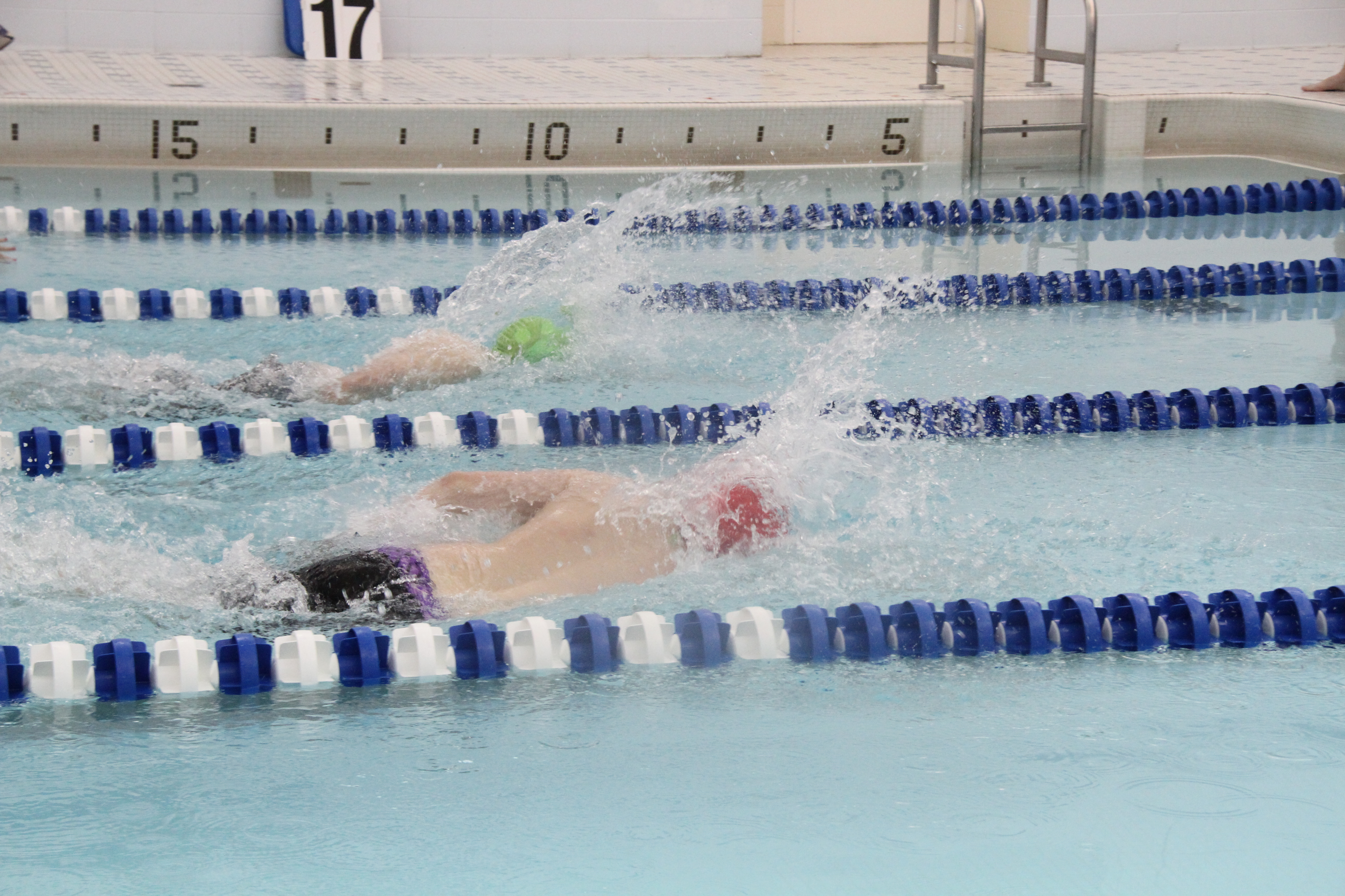 Dansville Swimming Team Wins 8 of 12 Events Against Haverling
