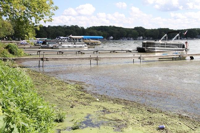Toxic Scum Sours Swimming Fun on Conesus Lake