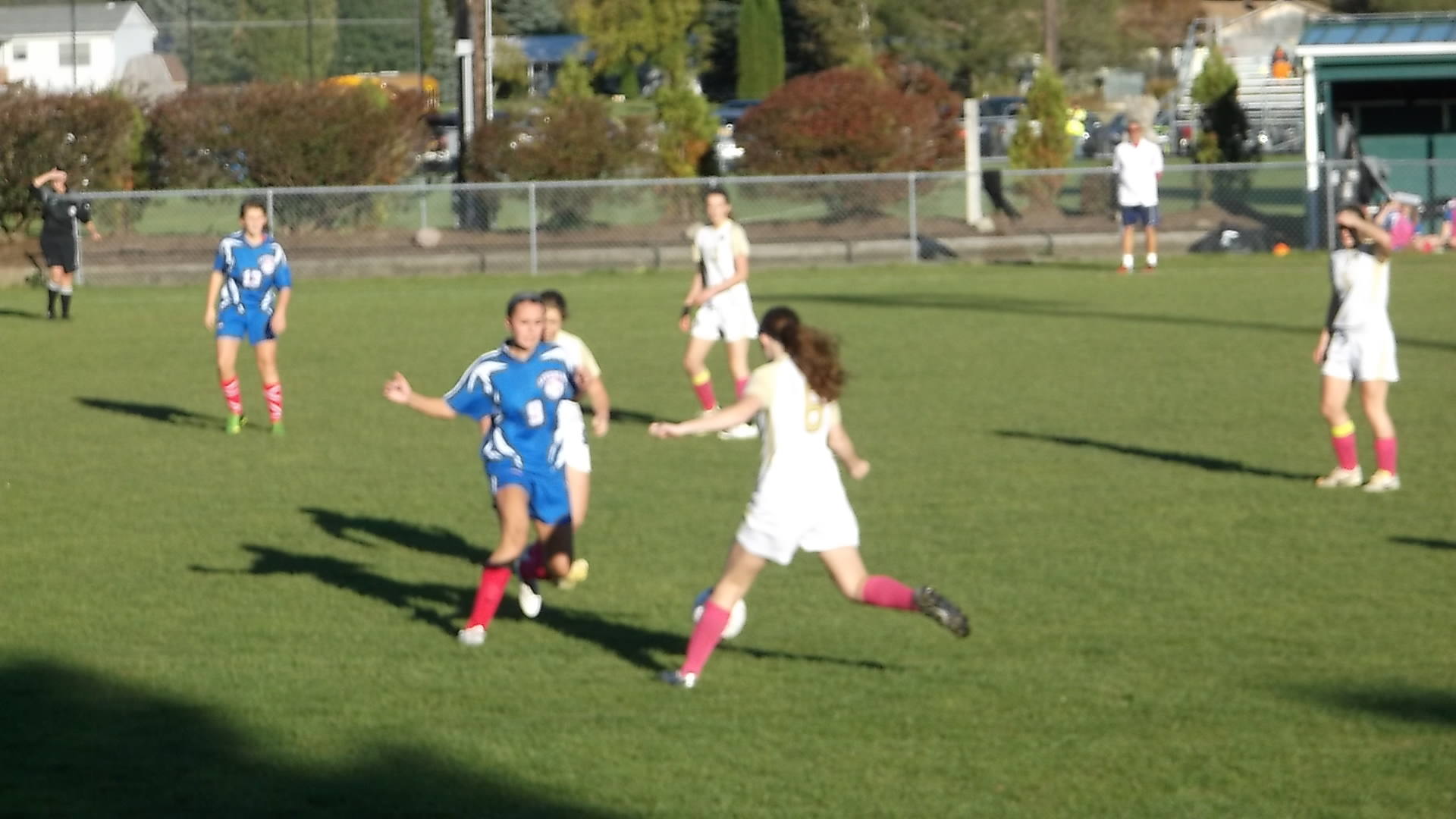 GIRLS VARSITY SOCCER: Livonia Stands Tough Against Wayland Cohocton