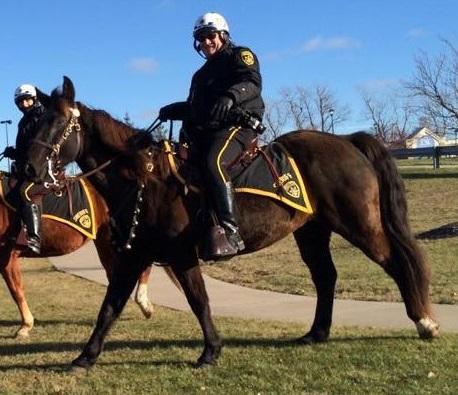 Sheriff's Mounted Patrol Horse 'Twister,' Passes Away