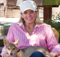 Cali Coyote Advocate Outraged by Shooting of Horses