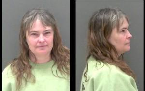 Ann Rauber. (Photo/Livingston County Sheriff's Office)