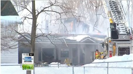 Numerous Dogs Lost in Tragic Kennel Fire