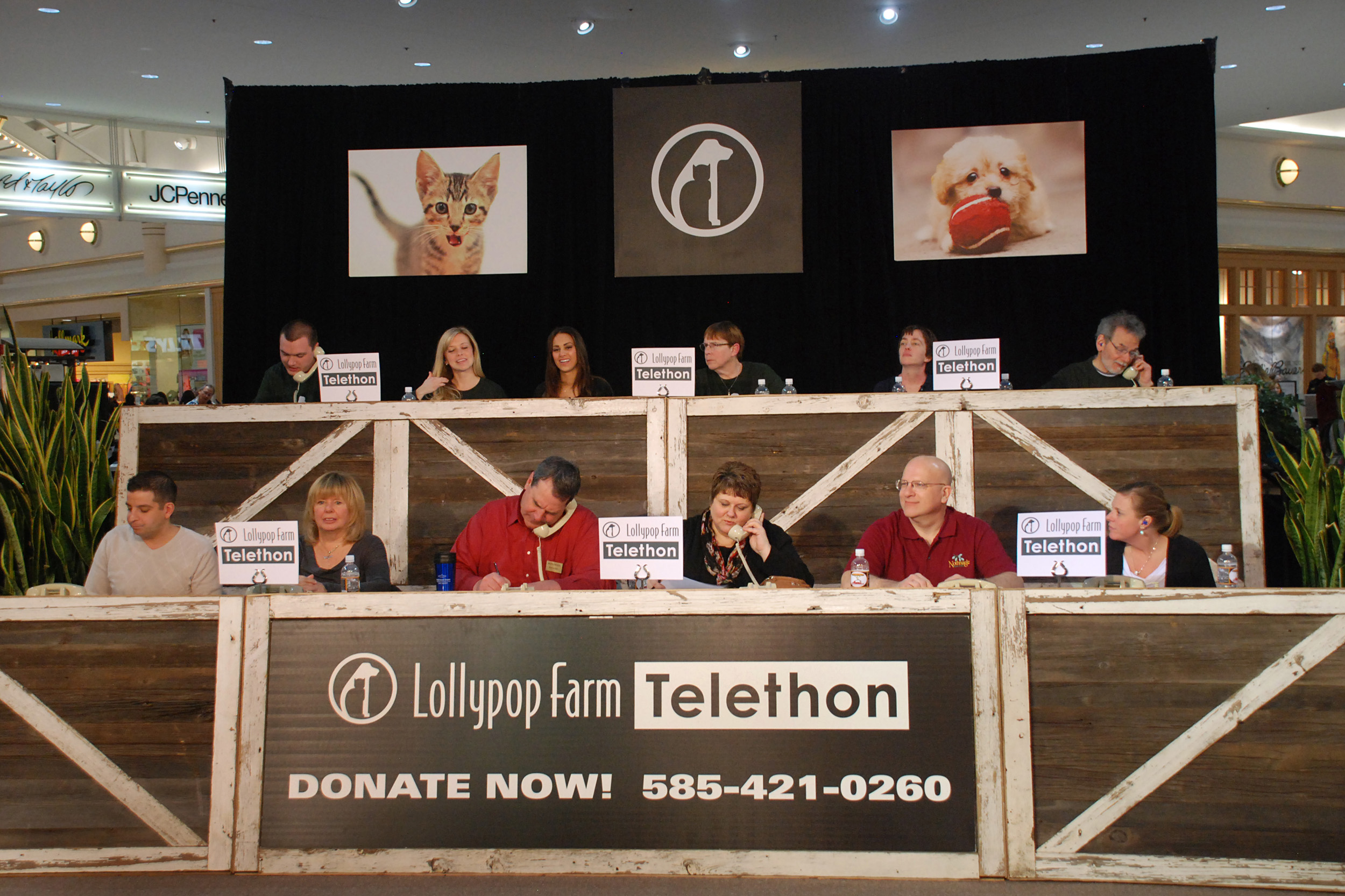Rescued Animals to Prance in Spotlight at 'Tails of Hope Telethon'