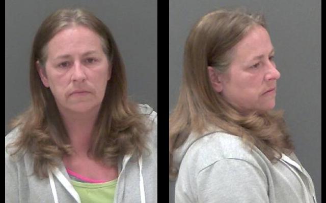 Portage Woman Arrested on Welfare Fraud Felonies