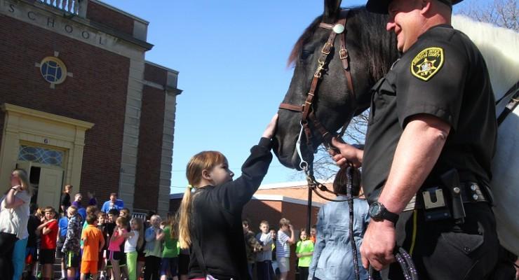 Sheriff's Office's Horse Dubbed 'Merrick' in Loving Memory of Deputy
