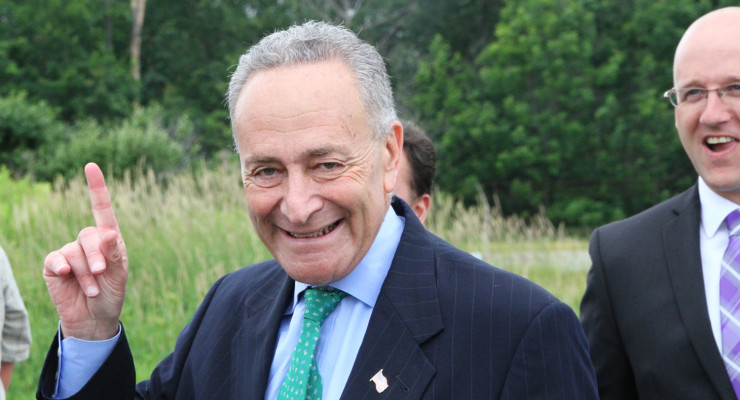 Schumer: Avon's Cool Whip Will Be on Your Pumpkin Pie for Years to Come