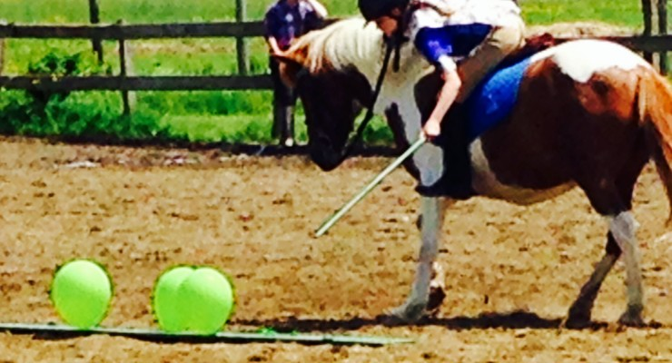 Genesee Valley Pony Club Shines in Competition