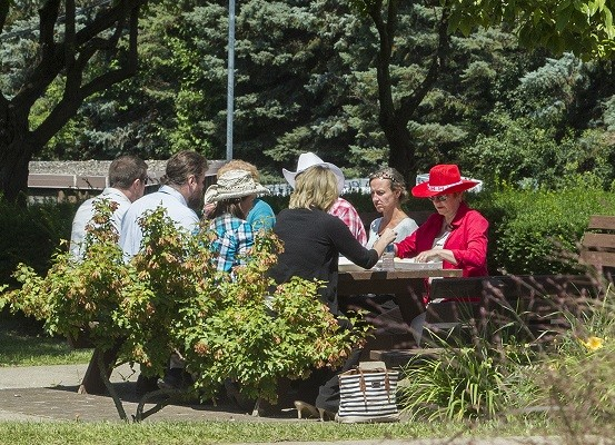 Scrubs Swapped for Cowboy Hats at Noyes Health Picnic 2015
