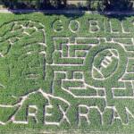 The fantastic corn maze. (Photo/ 13WHAM)