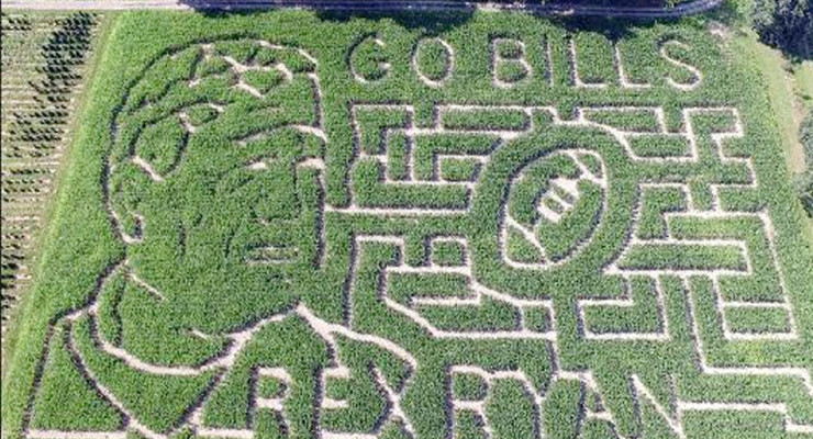 Bills Fans 'All Ears' Over Corn Maze