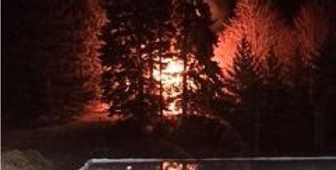 LeRoy Man Burns Own Home and Fatally Shoots Neighbor