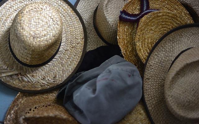Dansville ArtWorks and U of R Noyes Gather Hat Art for Cancer