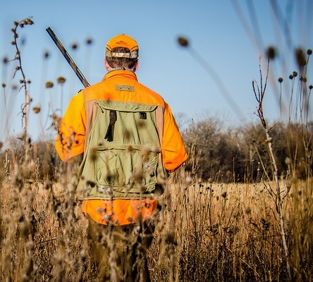 Youth Hunters Can Take Game Birds Early this October