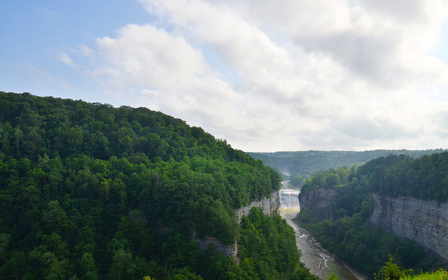 NYS Plants $20K in Letchworth State Park to Grow Volunteer Recruitment