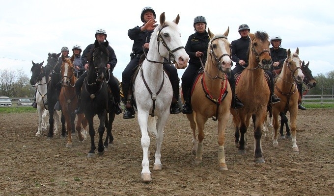 WNY Mounted Patrols Tune-Up During Volatile Election Year