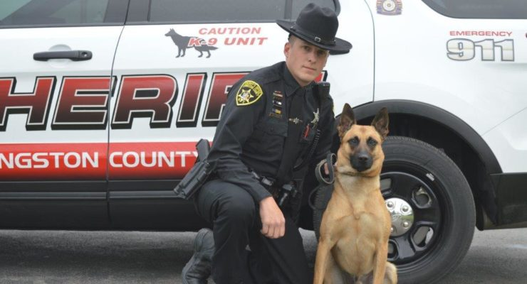 Sheriff's Office Welcomes Hondo as Next K9 Officer