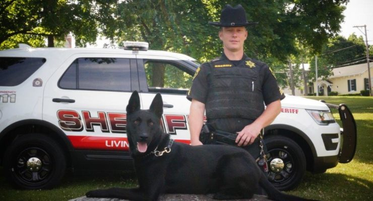 Vader Joins Sheriff's Office as Fourth K9 Team