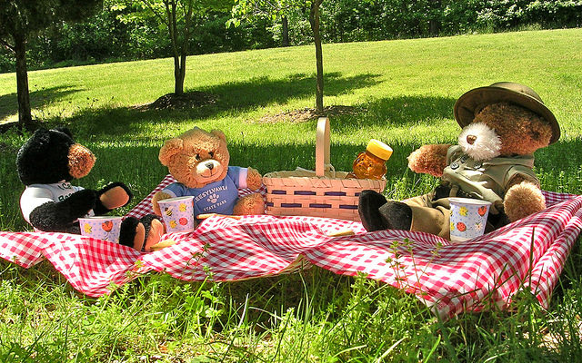 Letchworth Lets Visitors Bring their Own Bears to Picnic