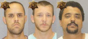 (L-R) Morse, Wood and Henry. (Photos/Livingston County Sheriff's Office)