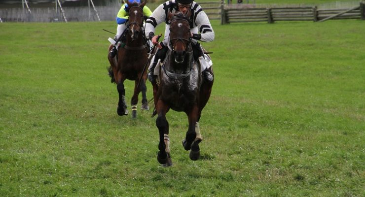 Photos: Horses and Riders Give and Win at Genesee Valley Hunt Races