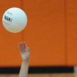 GIRLS VOLLEYBALL: Dansville Dominates at Quarterfinals
