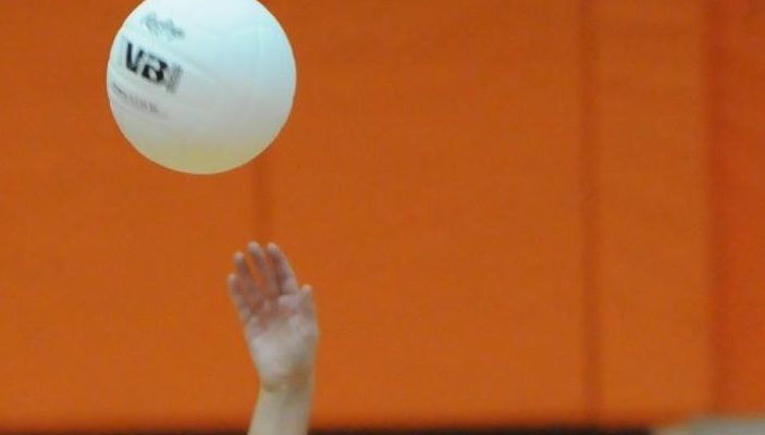 GIRLS VOLLEYBALL: Dansville Dominates at Quarterfinals
