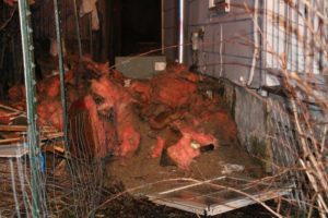 Removed insulation. (Photo/Conrad Baker)