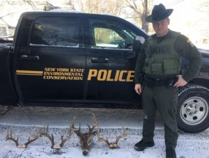An ECO stands with three deer crowns and a deer head. (Photo courtesy of the Livingston County District Attorney's Office)