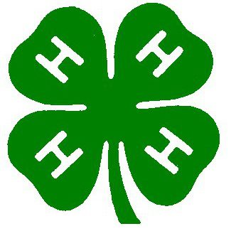 4-H Picks Avon High Schooler for National Conference