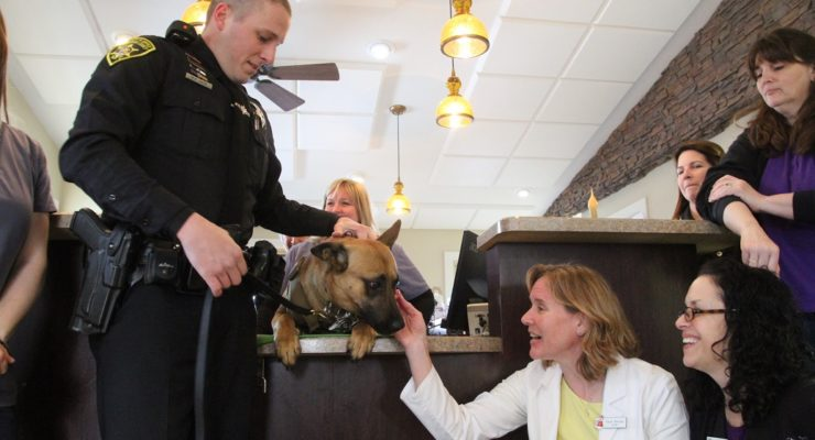 York Animal Hospital Fetches Vest for Sheriff K9 Hondo