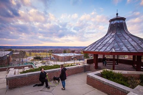 Internet Loves SUNY Geneseo Proposal Pic