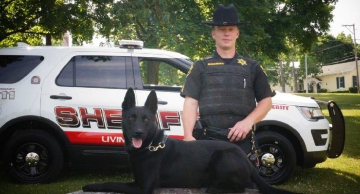 Donors Vest Sheriff K9 Vader for Free