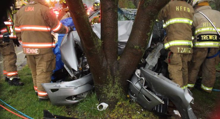 Car Into Lima Tree Trapped Driver During Monday's Storm