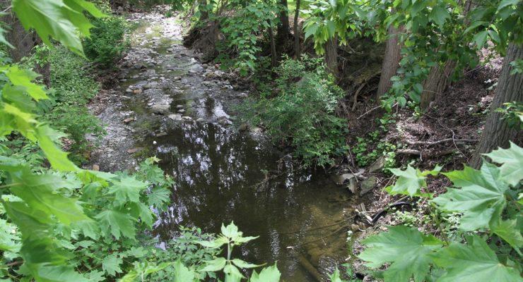 Future of Mount Morris' $300K Allen's Creek Grant is Muddy at Best
