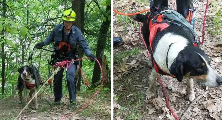 Letchworth Park Police Rope Rescue Missing Dog