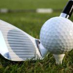 Dansville Beats Keshequa In Golf