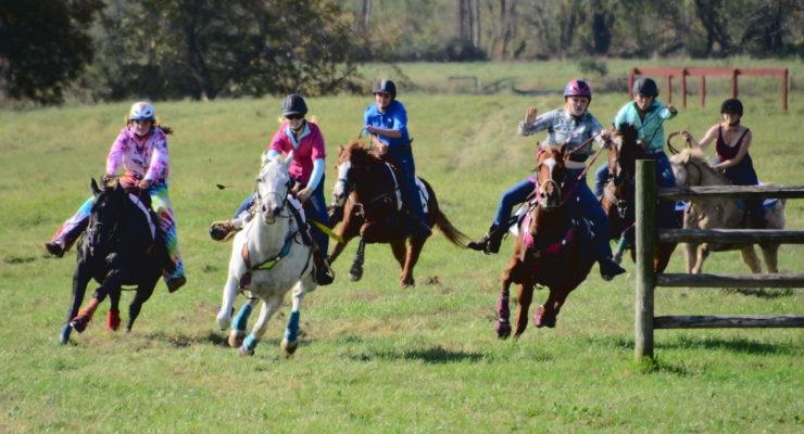 Exceptional Crowd Packs Genesee Valley Hunt Races