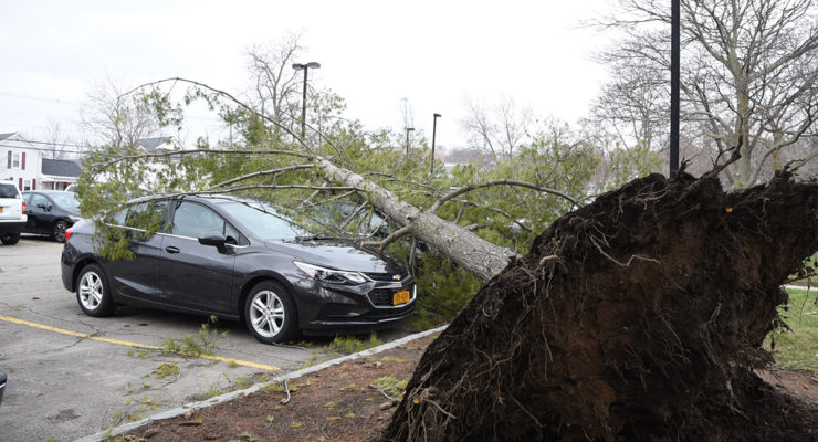 PHOTOS: Over 2,000 Residents Lose Power as Mother Nature Shows Hers