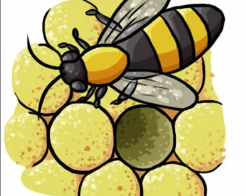 Free Beekeepers Discussion Group