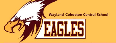 Will Trap Shooting Club At Wayland-Cohocton School be Allowed?