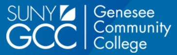 Roz Steiner Art Gallery at Genesee Community College Announces Call for Artists