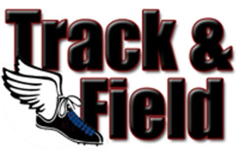 Results for The Dansville Boys And Girls Track and Field Teams Competions On Friday