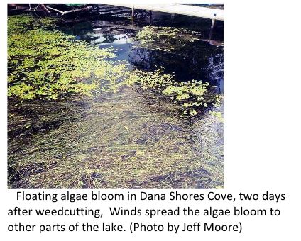 Weedcutter Returns to Honeoye Lake